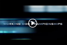 2015_Working_Dog_Championships