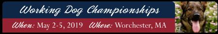 2019 Working Dog Championship